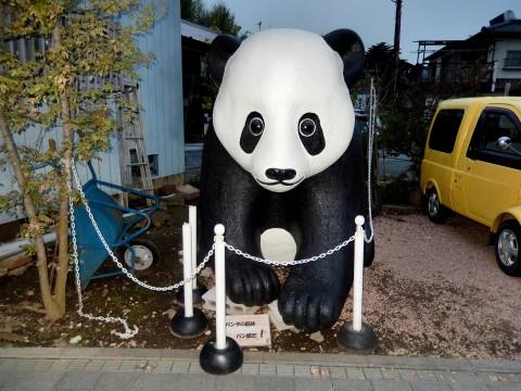 2015年4月16日 菓子屋横町のパンダ