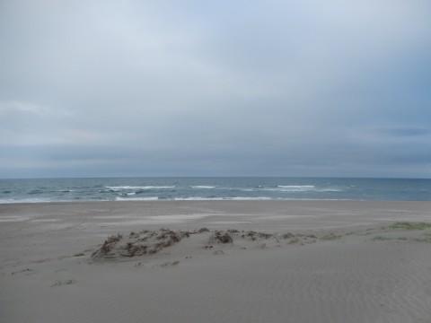 地図から消された海岸にて(2014年)