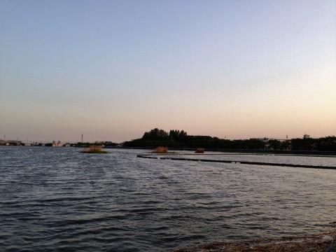 川越観光スポット「伊佐沼」