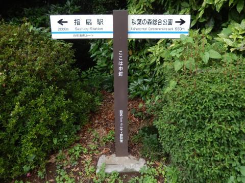 秋葉神社までのアクセス。