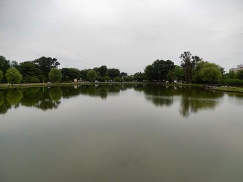 行田の水城公園は桜の名所