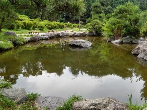 釣りや散歩ができる行田市民の憩いの場「水城公園」
