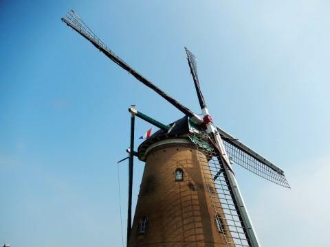 日欄親善のシンボル、千葉県佐倉市にあるオランダ風車「リーフデ」