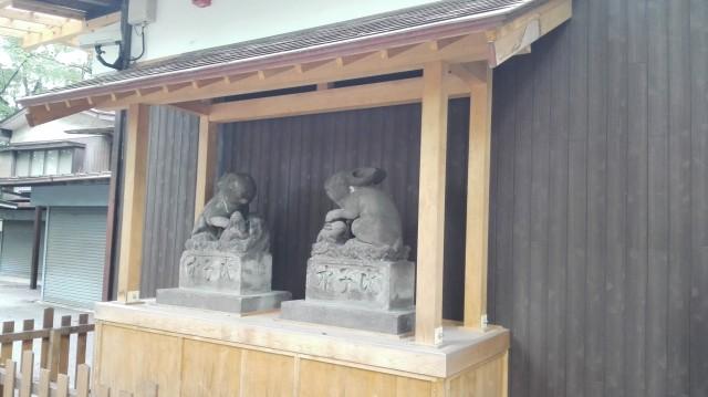 浦和の調神社には狛兎がいる?