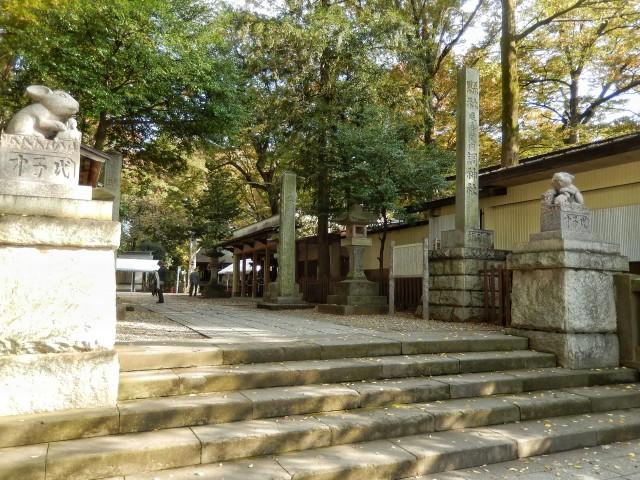 さいたま市浦和の観光スポット「調神社」の紅葉①