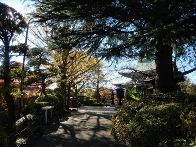東京都板橋区にある乗蓮寺の紅葉②