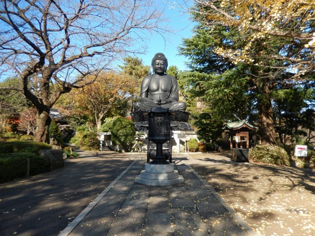 東京都板橋区乗蓮寺にある東京大仏の紅葉