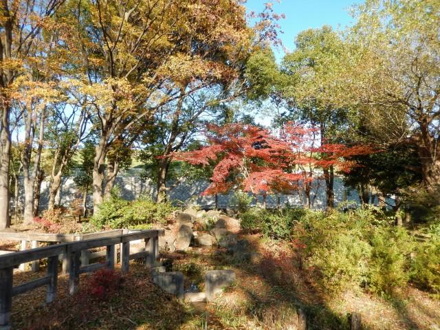 都内の紅葉スポット「浮間公園」①