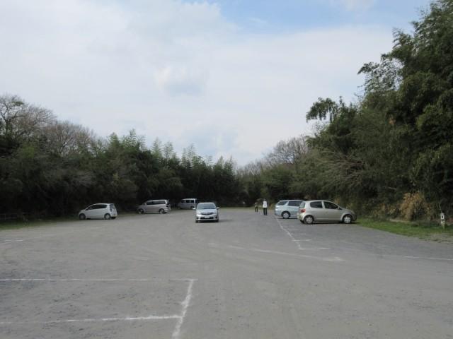 北本にある桜の名所「城ヶ谷堤」③