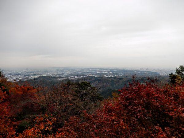高尾山の紅葉②