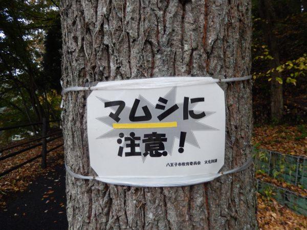 八王子城跡(心霊スポット)③