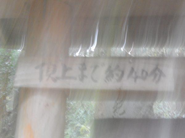 八王子城跡(心霊スポット)⑤