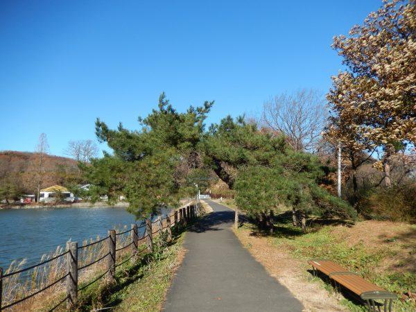 八丁湖公園④