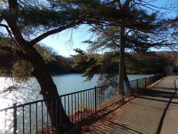 八丁湖公園③