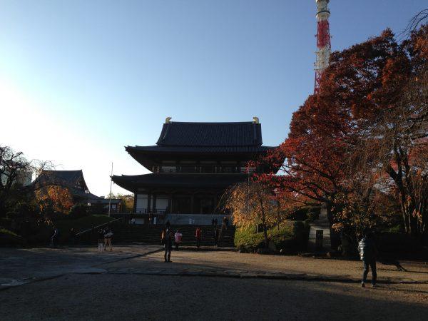増上寺と東京タワーと紅葉