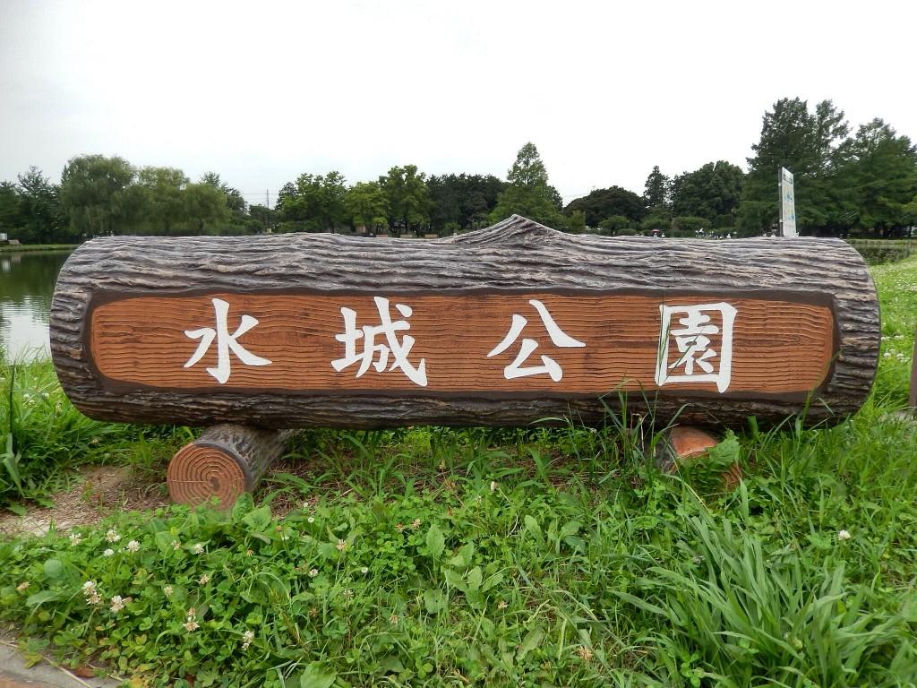 行田の「水城公園」は桜とホテイアオイの名所。散歩や釣りをするのにおすすめ。