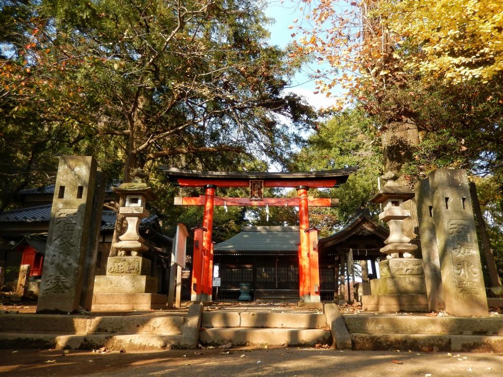 珍スポット?南浦和の大谷場氷川神社は狛犬じゃなくて狛キジがいる。