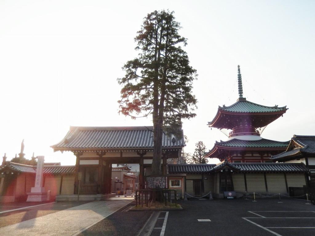 【神社仏閣巡り】与野七福神の円乗院は美しいけど写真撮影禁止!