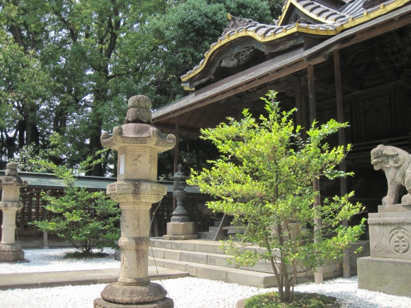 川越氷川神社(川越/観光)縁結びの神様と国内最大級を誇る大鳥居。