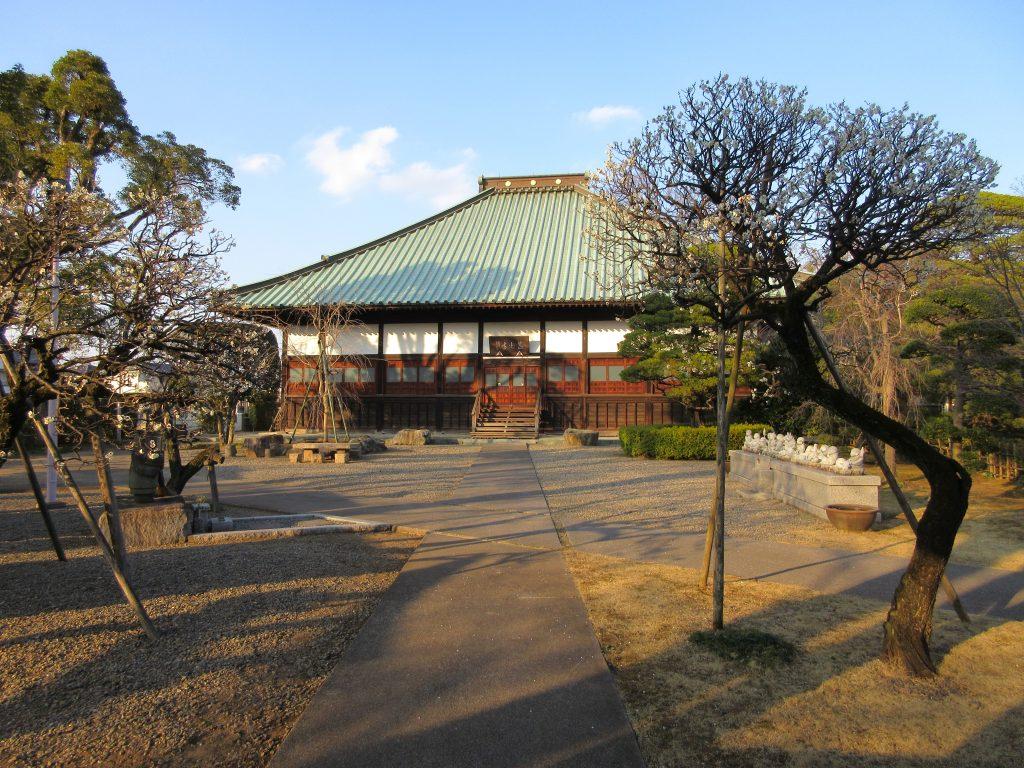 蓮光寺(川越/観光)桜並木が有名な新河岸川のほとりにあるお寺。