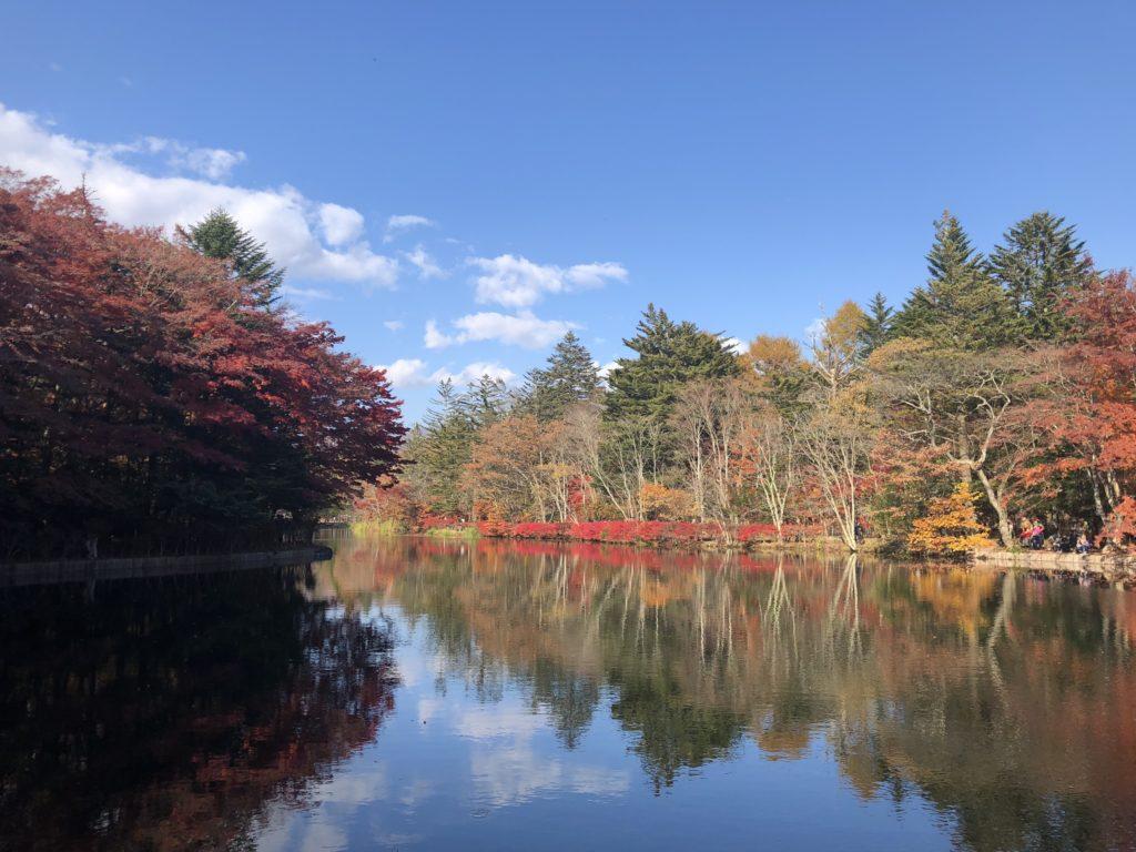 2018.11 Kumoba Pond
