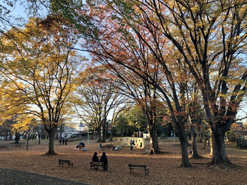 2019.11 Yono Park